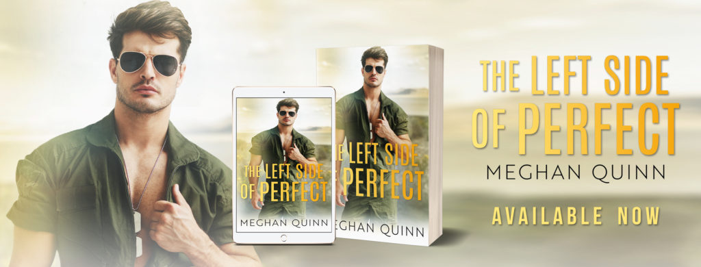 Image result for the left side of perfect meghan quinn